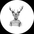 Avatarbild von Toerk Hvijed